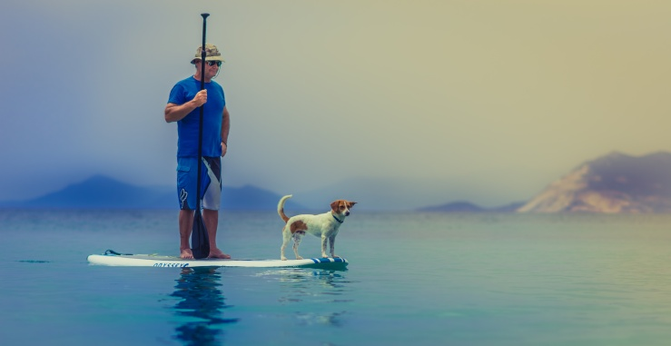 Are we still alive? #dogs #water #ocean #science #pets #brains #philosophy